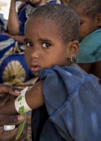 Die Hungersnot ist auch in Mali. Foto: Moussa Kalapo