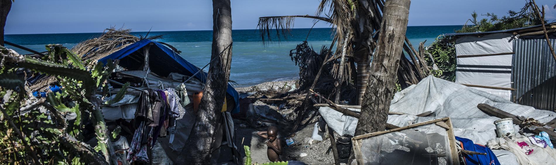 Überleben nach dem Sturm. Foto: Oliver Papegnies