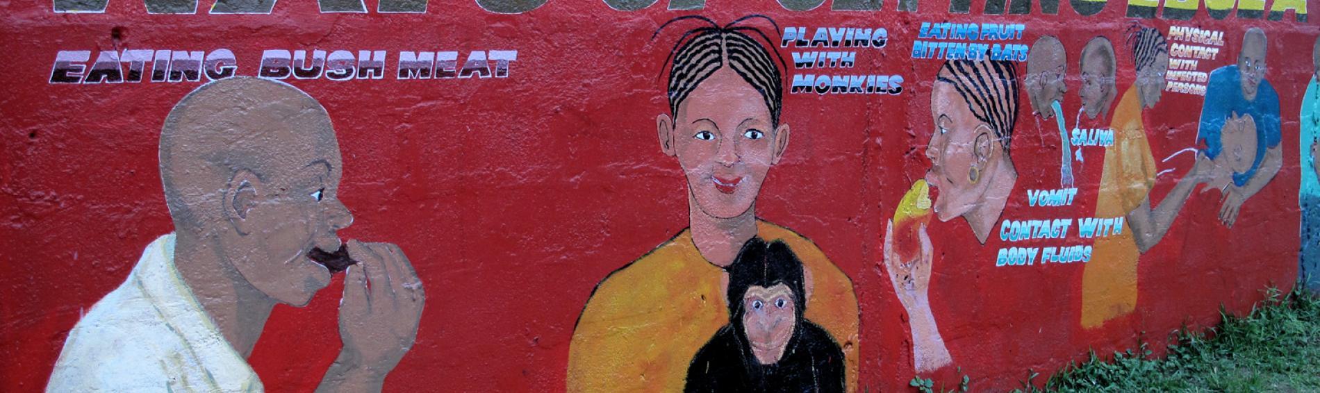 Detaillierte Wandmalerei über die Ansteckungswege mit Ebola. Foto: DR